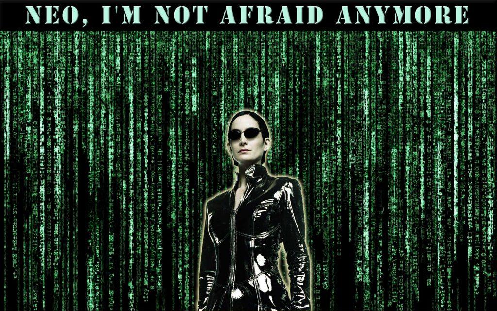 The Matrix Meet Trinity