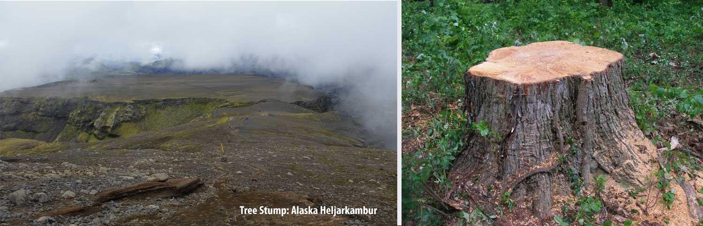 Flat Top Mountain Alaska Heljarkambur