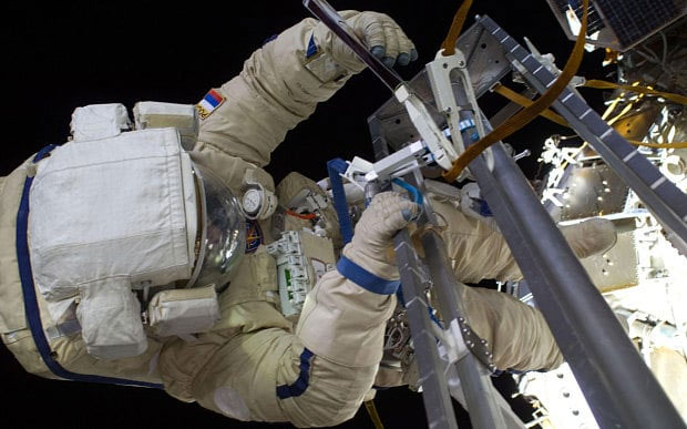 Sea plankton 'found living outside International Space Station
