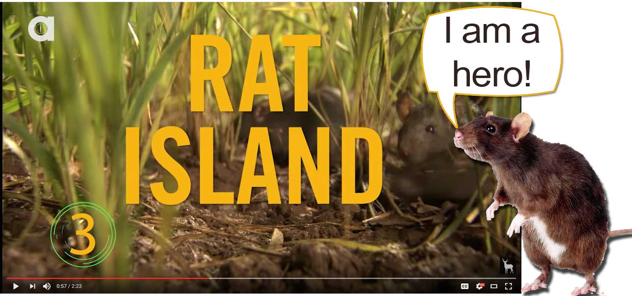 youtube-heroes-rat